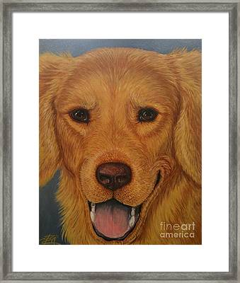 Charlie Golden Framed Print