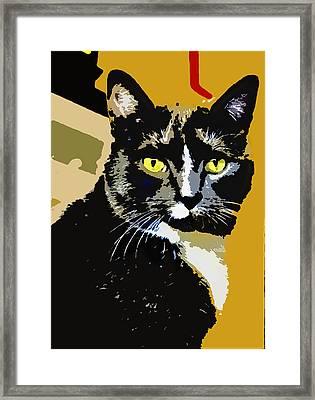Charlie Framed Print by Susan Stone