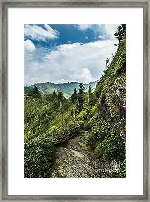 Framed Print featuring the photograph Charlies Bunion Trail by Debbie Green