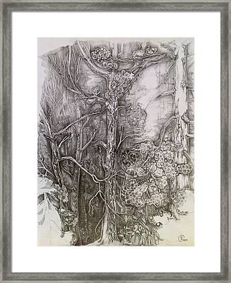 Charmed Forest Framed Print by Iya Carson
