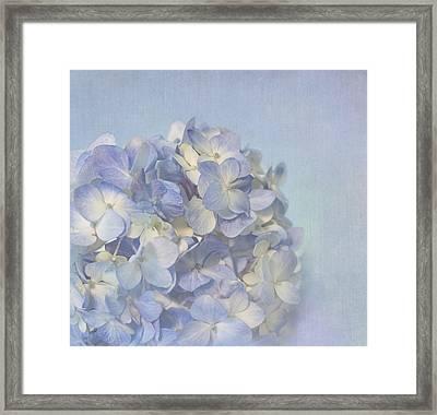 Charming Blue Framed Print