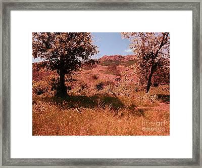 Charons Garden Wilderness Framed Print by Mickey Harkins