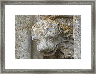 Framed Print featuring the photograph Chartres Cathedral Carved Head by Deborah Smolinske