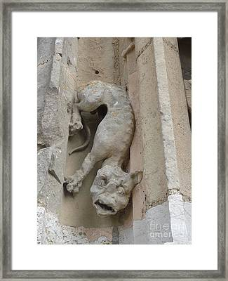 Framed Print featuring the photograph Chartres Cathedral Dog Gargoyle by Deborah Smolinske