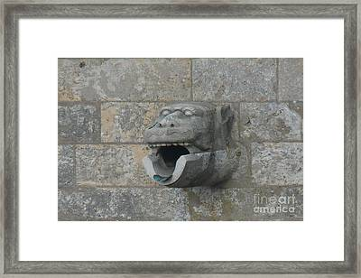 Framed Print featuring the photograph Chartres Cathedral Gargoyle Drain by Deborah Smolinske