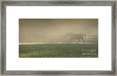 Chasing A Phantom Framed Print