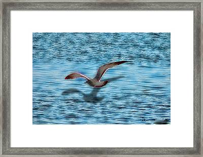 Chasing My Shadow Framed Print by EricaMaxine  Price