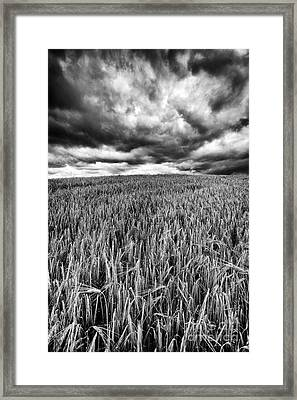 Chasing The Storm Framed Print by John Farnan