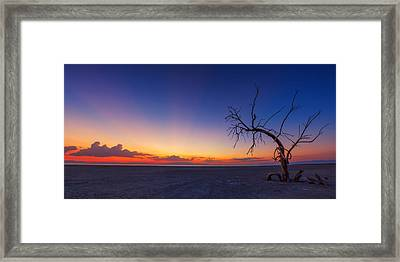 Chasing The Sun Framed Print