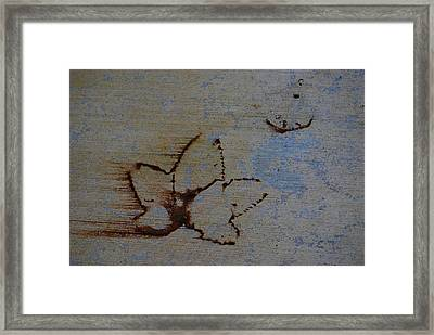 Framed Print featuring the photograph Chasing Winter by Jani Freimann
