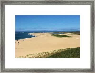 Chatham Dunes Framed Print
