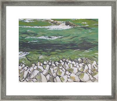 Chattahoochee Riverbank Framed Print