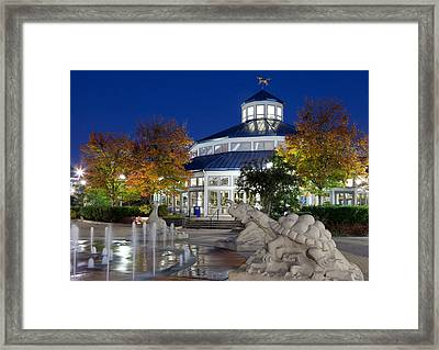 Chattanooga Park At Night Framed Print