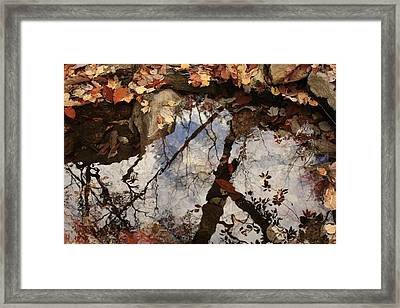 Framed Print featuring the photograph Cheaha Wilderness Reflection Alabama by Mountains to the Sea Photo