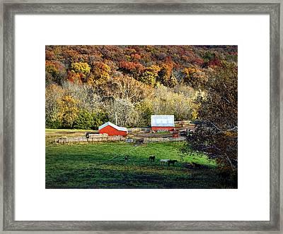 Cheavens Farm Framed Print by Cricket Hackmann