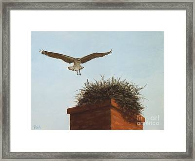Checking The Nest Framed Print