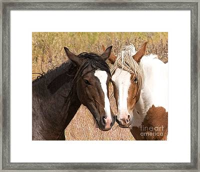 Cheek To Cheek Framed Print by Vinnie Oakes