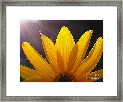 Cheer Up Framed Print