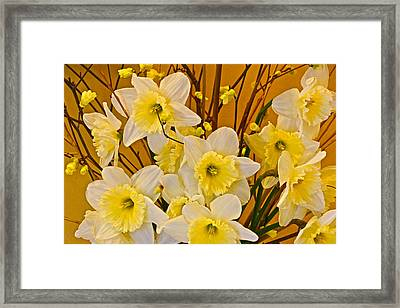 Cheerful Warmth Of Spring Framed Print by Byron Varvarigos