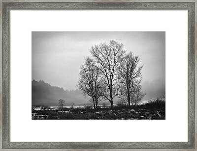 Cheese House Road Trees Framed Print