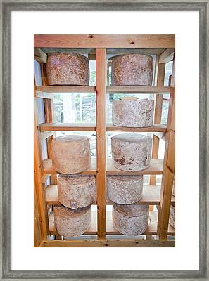 Cheese In A Specialist Cheese Shop Framed Print by Ashley Cooper