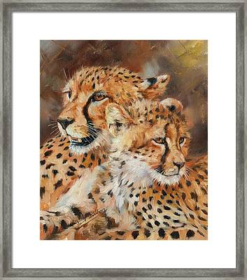 Cheetah And Cub Framed Print by David Stribbling