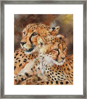 Cheetah And Cub Framed Print