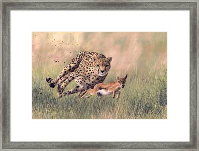 Cheetah And Gazelle Painting Framed Print by Rachel Stribbling