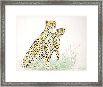 Cheetah Couple Framed Print by Dag Sla