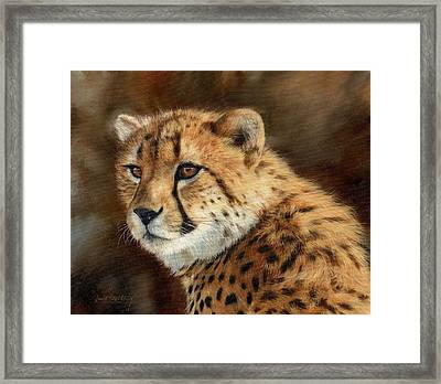 Cheetah Framed Print by David Stribbling