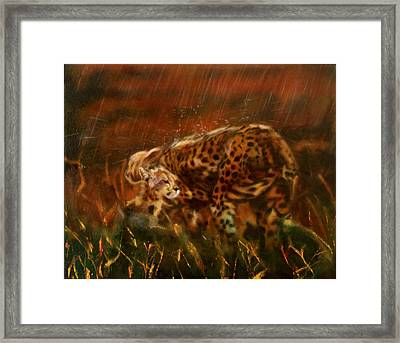 Cheetah Family After The Rains Framed Print by Sean Connolly