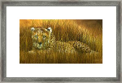 Cheetah - In The Wild Grass Framed Print by Carol Cavalaris