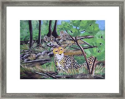 Cheetah Framed Print by Reba Baptist