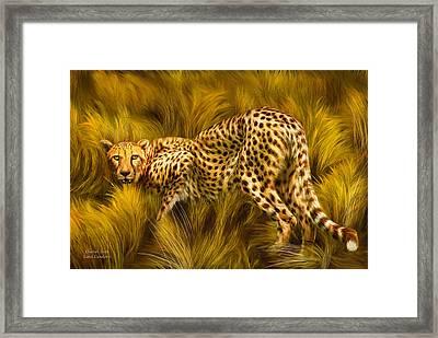Cheetah Stare Framed Print by Carol Cavalaris
