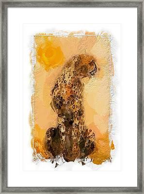 Cheetah Framed Print by Steve K