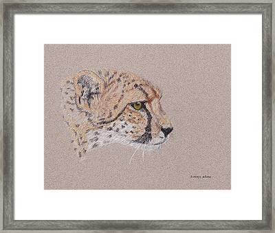 Cheetah Framed Print by Stephanie Grant