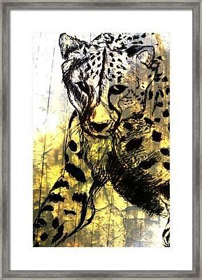 Cheetah-the Jungle Bullet Framed Print