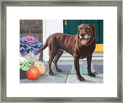Chelsea At The Door Framed Print