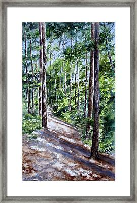 Framed Print featuring the painting Cheraw Trail by Mary McCullah