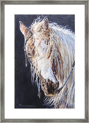 Cherokee Rose Gypsy Horse Framed Print