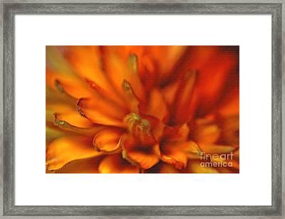 Cherokee Sunset Framed Print by Anne Gordon