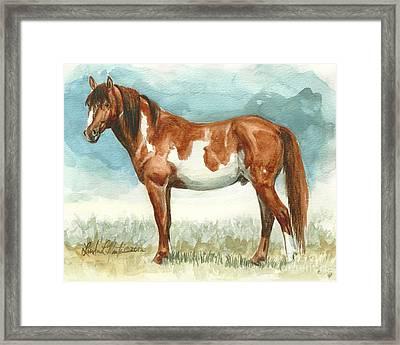 Cherokee Wild Stallion Of Sand Wash Basin Framed Print