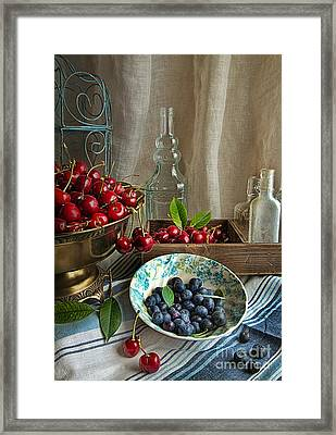 Cherries And Blueberries Framed Print by Elena Nosyreva