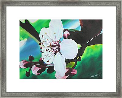 Framed Print featuring the painting Cherry Blosom by Joshua Morton