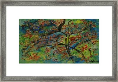Cherry Blossom Framed Print by Kelly Turner