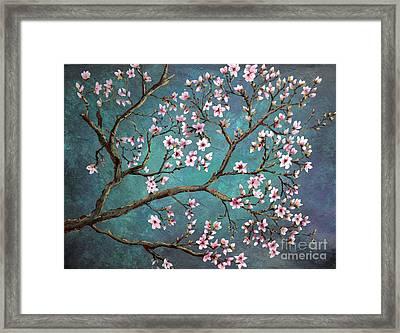 Cherry Blossom Framed Print by Nancy Bradley