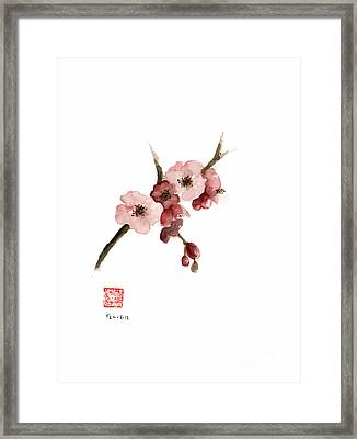 Cherry Blossom Sakura  Pink Tree Delicate White Flower Flowers Branch Watercolor Painting Framed Print by Johana Szmerdt
