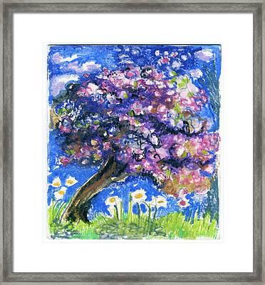 Cherry Blossom Spring. Framed Print
