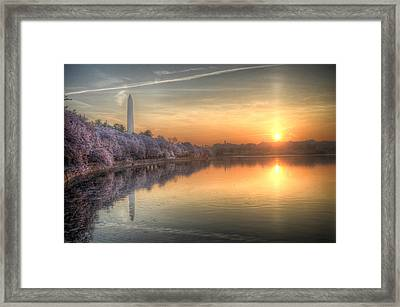 Framed Print featuring the photograph Cherry Blossom Sunrise by Michael Donahue
