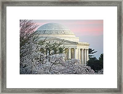 Cherry Blossom Sunset Framed Print